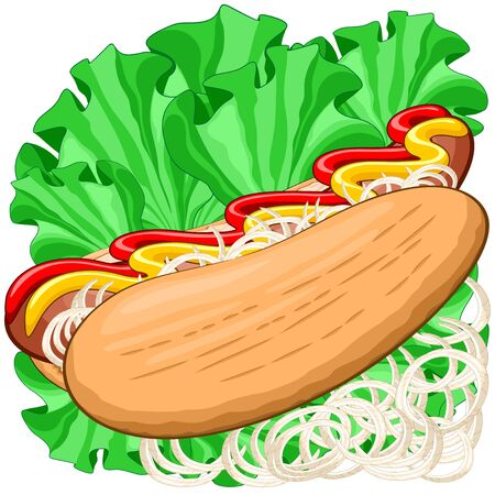 Hot Dog Sandwich with Sausage, Mustard, Ketchup, Lettuce and Onions Food Vector Illustration Illustration