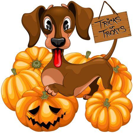 Dachshund Golden Tricks Halloween Treats Cute Cartoon Character Vector Illustration