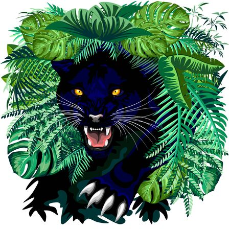 Black Panther Jungle Spirit coming out of the Jungle Vector illustration