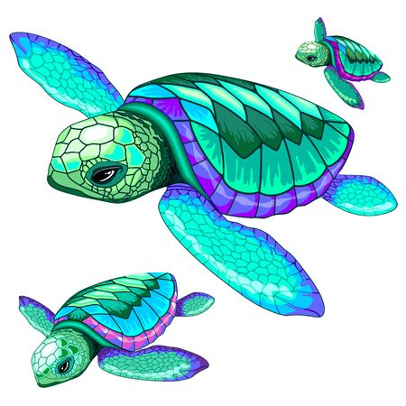 Sea Turtles Dance Oceanlife Vector Illustration Illustration