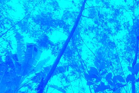 Abstract background, Natural Blue Фото со стока