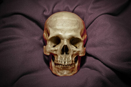 dreadful: skull