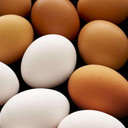 origen animal: huevos de color marrón y blancos