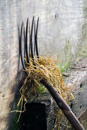 A pitch fork with straw leaning against a wall. Stock Photo
