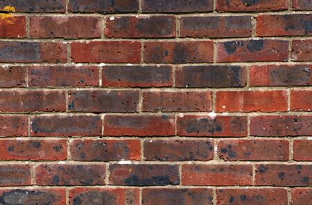 textured wall: A red brick wall as a background texture.