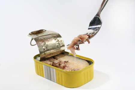A tin of open fish and a fork isolated on a white background. photo