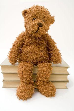 A cuddly bear sitting on three books.