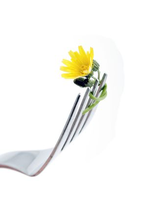 A fork with a small daisy tied on to it.  Stock Photo - 3676511