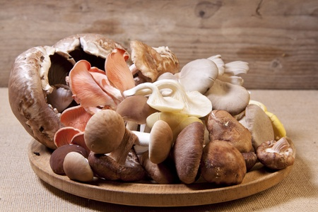 A pile of raw exotic mushrooms on a wooden plate. Stock Photo