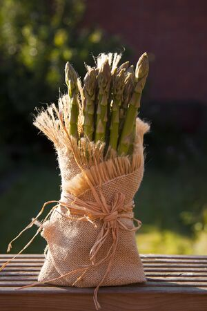 raped: A bunch of asparagus raped in a Hessian bag. Stock Photo