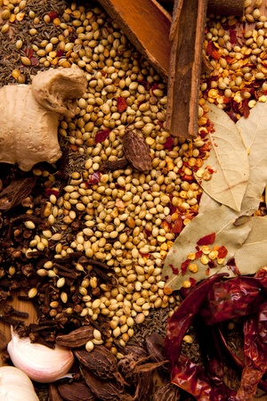 A collection of Indian spices as a food orientated background that will work well as a book cover.
