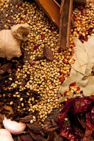 indian spices: Een verzameling van Indiase kruiden als voedsel georiënteerde achtergrond die goed zal werken als een cover van het boek.
