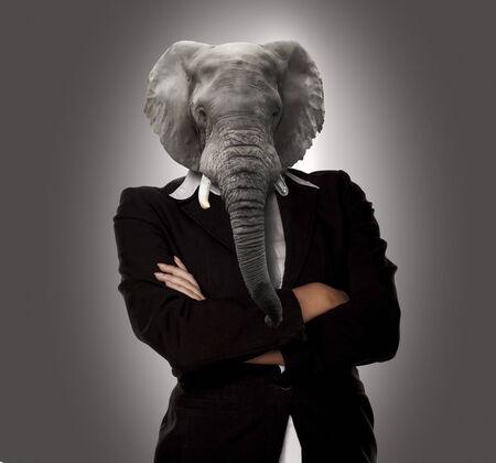nonsense: Concept image of a businesswoman with elephant head as a no nonsense boss.