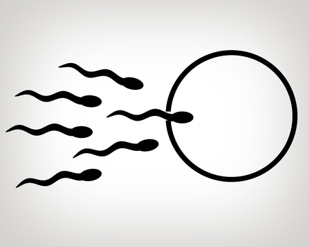 Sperm and egg cell illustration.