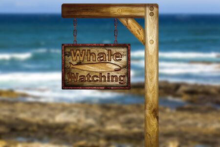 whale watching: Wooden whale watching sign over a ocean background.