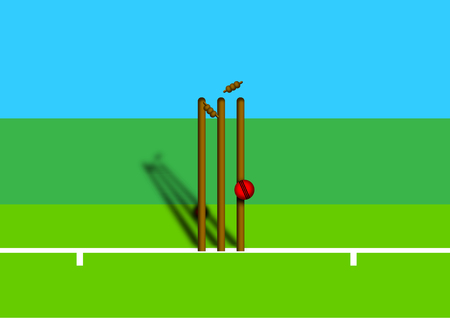Cricket illustration.
