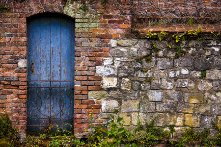 Old wall and door. Standard-Bild