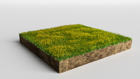 3D Illustration Square of grass field with flowers on white background Stockfoto