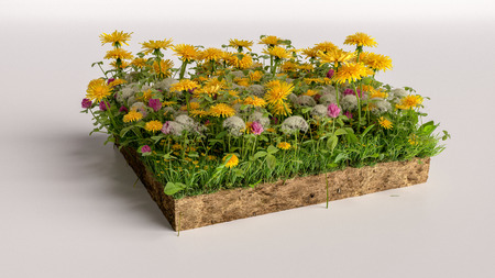 3D cubical flowers grass land with soil geology cross section, 3D Illustration ground ecology Archivio Fotografico