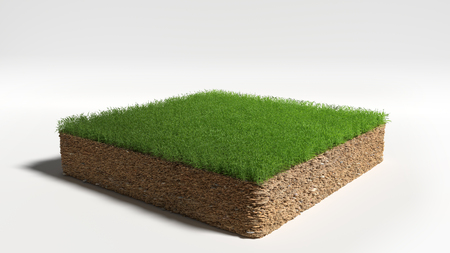 3D Illustration Square of grass field on white background