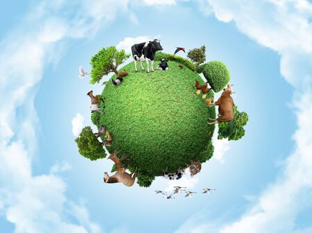 Green peace earth, miniature planet, globe concept showing a green, peaceful and animals poultry life 스톡 콘텐츠