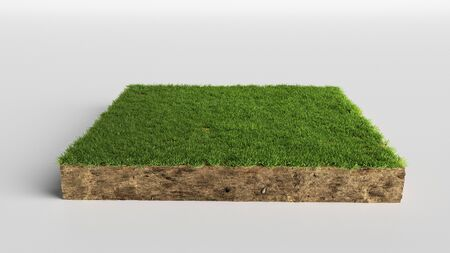 3D Illustration soil ground cross section with earth land and green grass, realistic 3D rendering cutaway terrain floor Imagens