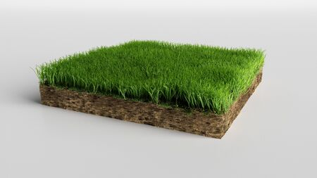 realistic 3D rendering cutaway terrain floor, 3D Illustration soil ground cross section with earth land and green grass Imagens