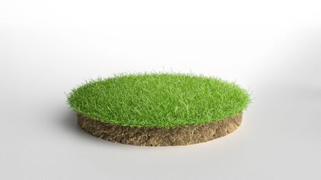 realistic 3D rendering circle cutaway terrain floor with rock isolated, 3D Illustration round soil ground cross section with earth land and green grass