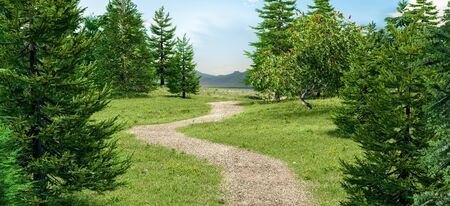 Path in the grass field with pine trees. 3D rendering. 写真素材