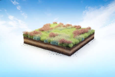 3D cubical garden grass land with red flowers, soil geology cross section, 3D Illustration ground ecology isolated on blue sky 版權商用圖片
