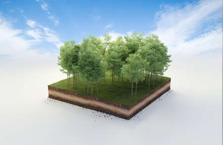 3D cubical beautiful forest land with trees, soil geology cross section, 3D Illustration ground ecology isolated on blue sky