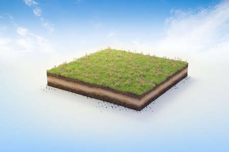 3D cubical garden grass land with yellow flowers, soil geology cross section, 3D Illustration ground ecology isolated on blue sky 版權商用圖片