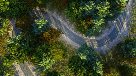 Aerial view of winding road in the morning forest, road trip concept. 版權商用圖片