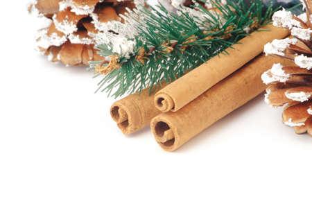 cinnamon stick and fir cone