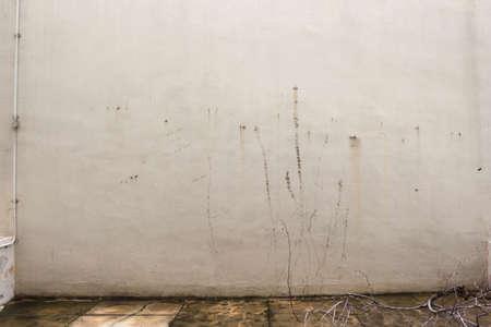 grungy: Grungy white wall Stock Photo