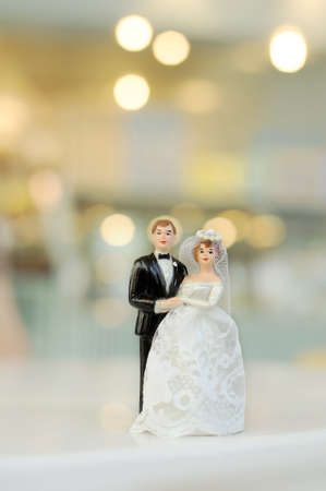 miniature wedding doll with blur background photo