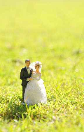 wedding couple doll on green grass background photo