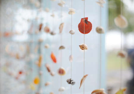 tropical sea shell mobile decoration Stock Photo - 14614335