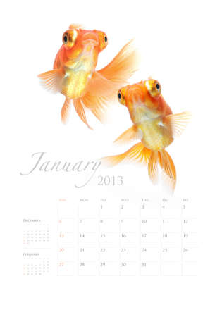 2013 Calendar A4 vertical size, Goldfish lover concept Stock Photo - 14949169