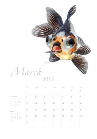 2013 Calendar A4 vertical size, Goldfish lover concept Stock Photo - 14949225