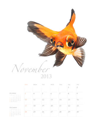 2013 Calendar A4 vertical size, Goldfish lover concept Stock Photo - 14949142