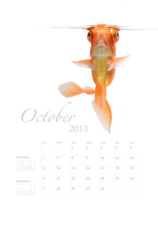 2013 Calendar A4 vertical size, Goldfish lover concept Stock Photo - 14949149