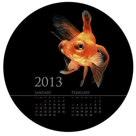 CALENDAR 2013 goldfish concept in round circle shape design photo