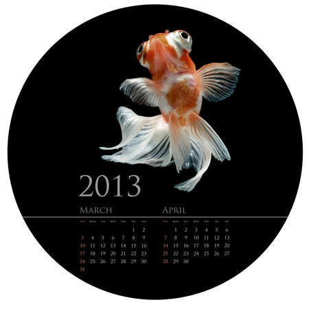 CALENDAR 2013 goldfish concept in round circle shape design photo