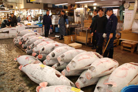 Fish seller at Tsukiji Market, the biggest wholesale market in Japan Stock Photo - 21092035