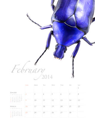 2014 calendar , insect bug beetle design on white background Stock Photo - 22975023