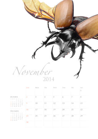 2014 calendar , insect bug beetle design on white background Stock Photo - 22975031
