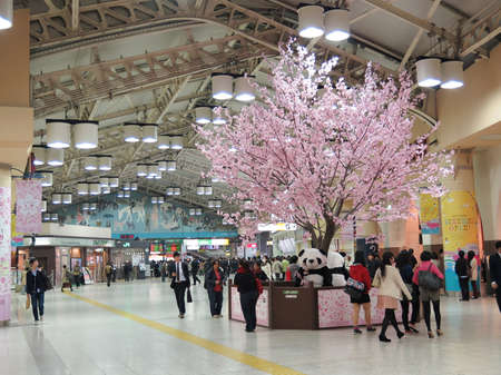 Sakura tree inside Ueno station in spring season taken April 8, 2014 in Tokyo. Ueno is one of busiest station hub in Tokyo which close to Ueno zoo and park.