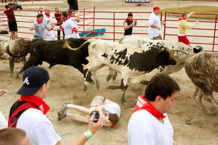adrenaline rush: Conyers, GA, USA - October 19, 2013:  A man lies in the fetal position after being trampled while while running with the bulls at The Great Bull Run at the Georgia International Horse Park.  The man walked away with minor injuries. Editorial