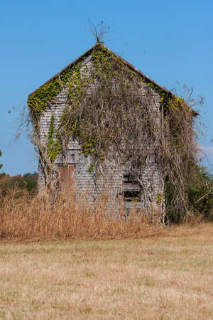 An overgrown, abandoned farmhouse sits in a North Georgia field. Stock Photo